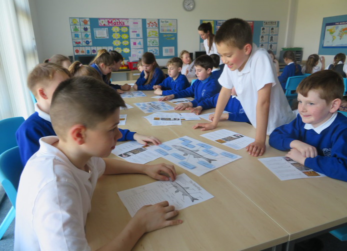 Pupils of Dalbeattie Primary School working as groups to label the parts of the Sparling