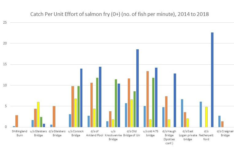 Catch per unit effort of salmon fry